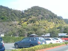 ラスト鹿児島7