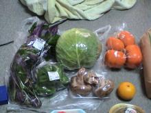 日記/食料支援物資_03