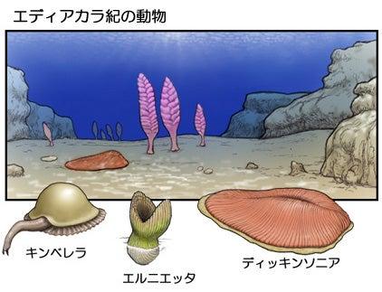 エディアカラ紀の生物