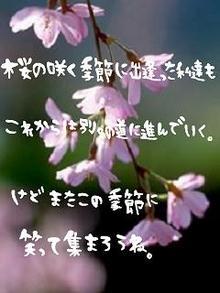 グラフィック0723043.JPG