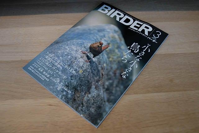 野鳥雑誌バーダー