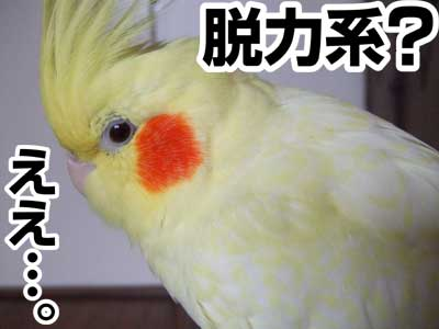 たんぽぽ032507