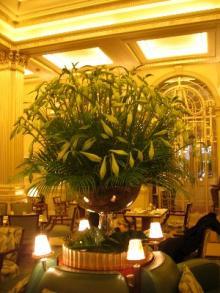 ホテルの花2