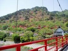 tutujiyama