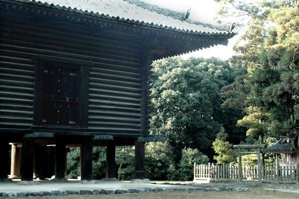 元極妻母さんと 必撮父さんの 人生 写し絵ブログ BY ニコンD200-10
