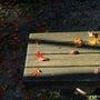 秋の中野邸、紅葉