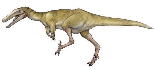 川崎悟司 オフィシャルブログ 古世界の住人 Powered by Ameba-Austroraptor cabaza