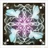 蝶の曼荼羅の画像