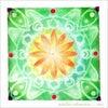 フィールド--緑の曼荼羅の画像