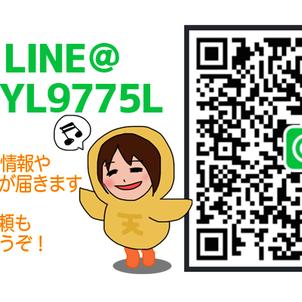 蛯原天LINE@アカウント開設!の画像
