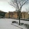 雪景色ですの画像