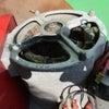 トラベラー T2500H 煙が出た 整備 の画像