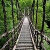 吊り橋効果の画像