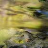 玉虫色の画像