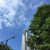 東京国際ミネラルフェアへ♪の画像