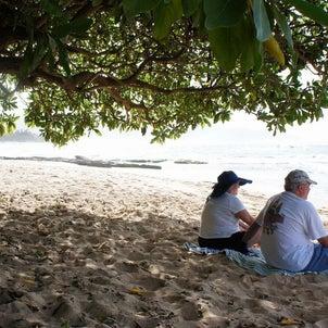 Papailoa Beach ~ロケ地としても使われた隠れ家ビーチ~の画像