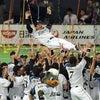 日本ハムファイターズ優勝の画像