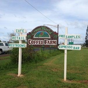 Green World Coffee Farmの美味い物の画像