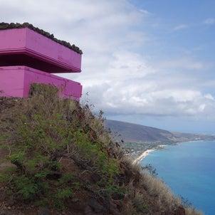 Maili Pillbox Hike ~ オアフ島西海岸の超絶景トレイル ~の画像