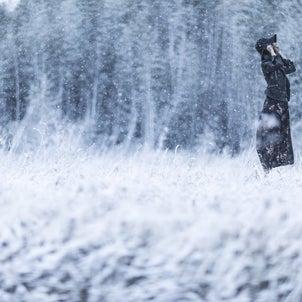 冬のポートレートの画像