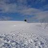 美瑛は雪景色の画像
