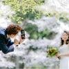 前撮りロケ・4月 洋装の桜ロケレポート①の画像
