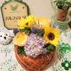 今年も元気の出るお花をいただきました☆彡の画像