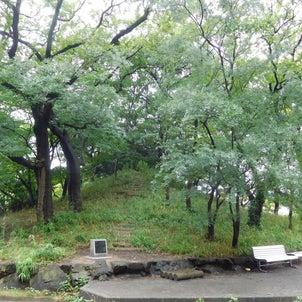 八尾高校の狐山の画像