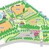 らんらんランニング練習会@朝宮公園の画像