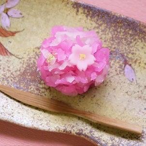 和菓子の桜も満開です✿の画像