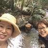 自然deごはんpresents 森ピクニックin田原の屋久島 4/24開催します!の画像
