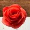 KDFC あんペーストフラワー受講生募集 ベーシックコース~Bean Paste Flower~の画像