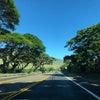 ハワイ旅行記  その8  〜ハレアカラ国立公園〜の画像