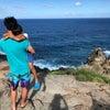 ハワイ旅行記  その11 〜危険なオリビンプール〜の画像