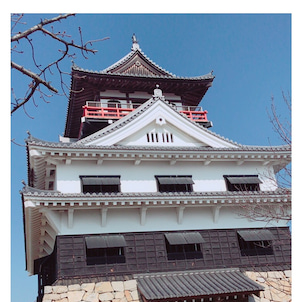 川之江城♪デザイン住宅ZERO-CUBE(ゼロキューブ)♪の画像