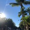 Hawaii家族旅行から帰国☆の画像