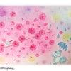 河津桜も満開!の画像