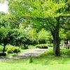 オカリナレッスン記【二俣川教室】(初級&中級同日開催の巻)の画像