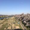 【報告】4/16 仙台大学【ドナー登録会】の画像