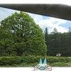 新緑の砧公園と絵ギャラリーの画像