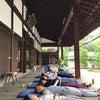 京都・禅×SARAで新元号パワー☆の画像