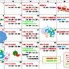 7月教室カレンダーの画像
