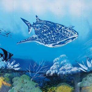 enjoy Spray paint art .Dolphin.イルカ2019-6-9の画像