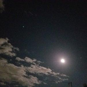 今日の月はの画像