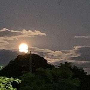 お月様♪の画像
