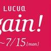 FABIO RUSCONI LUCUA1100 BARGAIN!! お勧めアイテムご紹介の画像