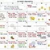 8月の教室カレンダーですの画像