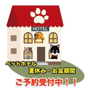 ペットホテル 名古屋 お盆期間 ご予約受付中!!の画像