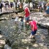夏休み!川でBBQ!の画像