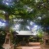 8月8日龍神の日♡日帰り箱根4社巡りの画像